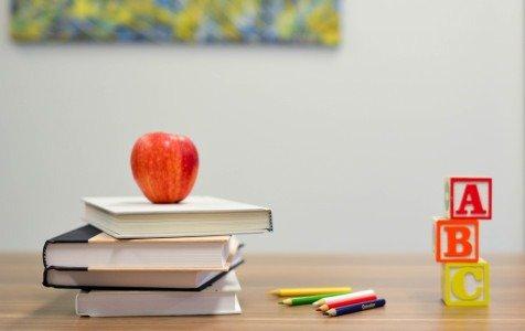 Visoje Lietuvoje dėl koronaviruso dviem savaitėms uždaromos švietimo įstaigos
