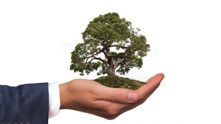 Ekologiškesniam verslui – 22 mln. eurų ES investicijų
