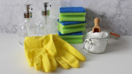 Dezinfektologas pataria: kaip valyti namus ir kokias priemones naudoti