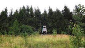 Senos formos registruoti medžioklės lapai – iki rugpjūčio 15 d.