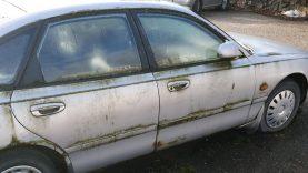 Skelbiami neeksploatuojamų automobilių sąrašai