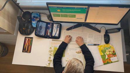 Virtuali mokykla - misija įmanoma. Specialistų patarimai ir rekomendacijos