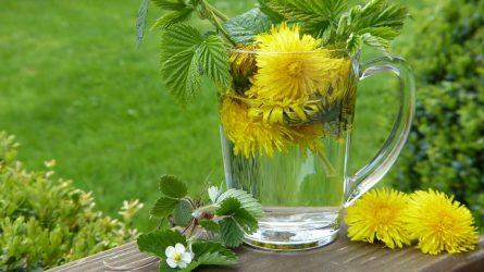 Rūpinkimės sveikata pavasarį