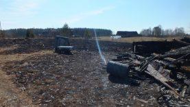 Dėl padegtos žolės per parą sudegė 12 pastatų