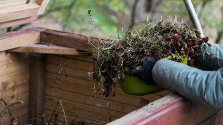 Žaliųjų atliekų tvarkymas karantino metu