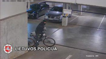 Klaipėdoje sulaikytas brangių automobilių detales vogęs įtariamasis (video)
