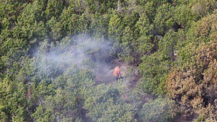 Prevenciniai reidai padeda išvengti gaisrų miškuose