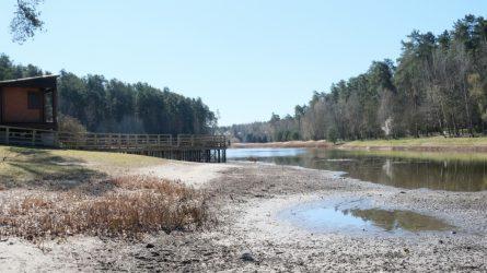 Šiemet nebus galima maudytis Mažosios Dailidės ežerėlyje