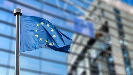 EK pavasario prognozė: šiemet Lietuvos BVP mažės, 2021 metais tikimasi atsigavimo