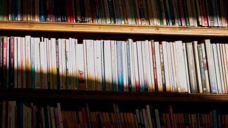 Bibliotekų fondams papildyti – 1,7 mln. eurų