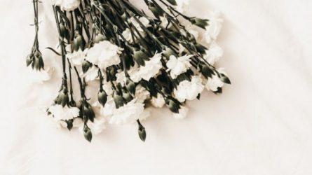 Sušvelninti apribojimai laidotuvių apeigoms bei gedulingiems pietums karantino metu