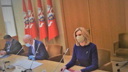 R. Tamašunienė: mūsų tikslas – efektyvios ir greitos migracijos paslaugos