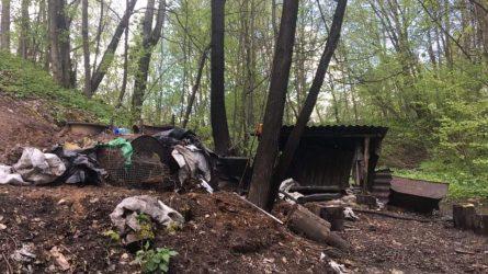 Kauno rajono miškuose aptikta tona naminės degtinės ruošinio (video)