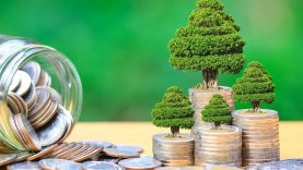 Vyriausybė vidaus rinkoje išplatino 28 mln. eurų žaliųjų obligacijų