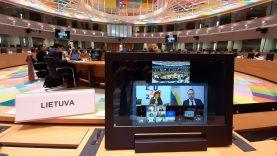 ES kultūros ministrai pasikeitė aktualia informacija dėl apribojimų naikinimo kultūros ir kūrybiniams sektoriams