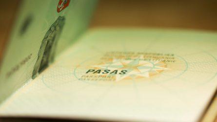 R. Tamašunienė: nuo penktadienio vėl bus priimami pilietybės atkūrimo prašymai