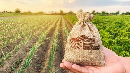 Jauniesiems ūkininkams – beveik 17 mln. Eur