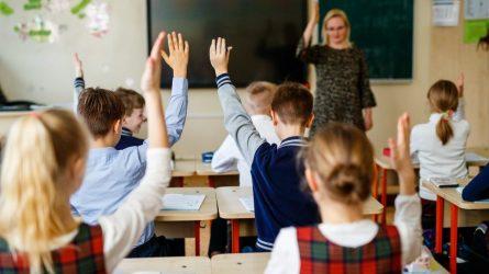 Darbą pradėjo atnaujinamų mokymo programų rengėjai - beveik 100 mokytojų ir mokslininkų