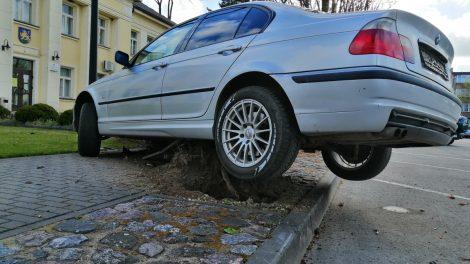Rietave BMW  automobilis genėjo  ąžuolus