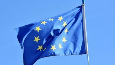 Teisingumo ministras E. Jankevičius: reikia užtaisyti  ES piliečių teisių apsaugos spragas