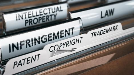 Intelektinės nuosavybės apsaugos politiką koordinuos Vyriausybės komisija