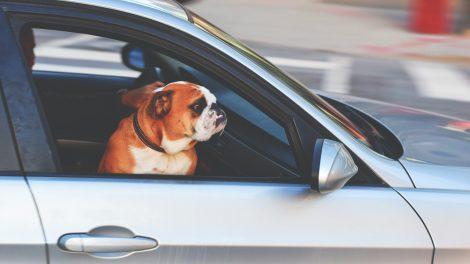 Karščio spąstai vairuotojams: temperatūrai pakilus aukščiau 24 laipsnių, padaugėja eismo įvykių