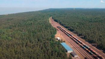 Girulių miškas – ne vieta geležinkelio mazgo plėtrai