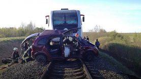 Siekiantis papirkti pareigūną vairuotojas turėtų suprasti, kad traukinio jis  nepapirks