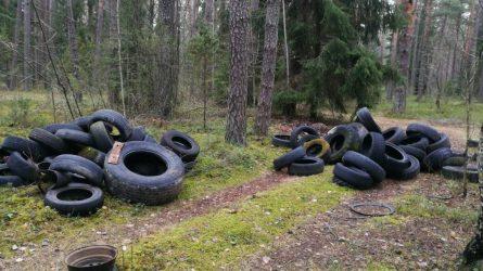 Šalies miškuose surinktų senų padangų skaičius – jau rekordinis