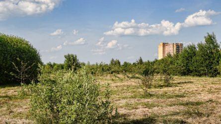 Aiškėja Kniaudiškių parko vizija