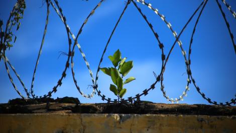 Teisingumo ministras E. Jankevičius – Lietuvoje mažėja ir toliau mažės įkalintų asmenų skaičius