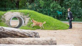 Vilniuje – modernios gyvūnų vedžiojimo aikštelės