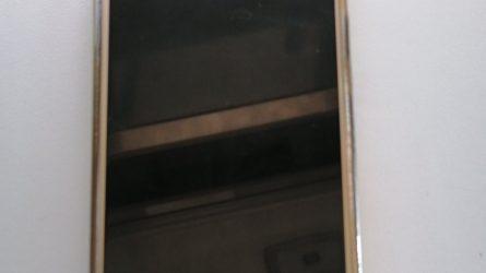 Sostinės kriminalistams įkliuvo kišenvagis (video)