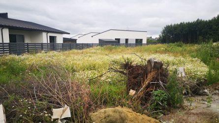 Sudarytas preliminarus nenaudojamų ir apleistų žemės sklypų sąrašas
