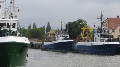 Siūloma nustatyti prievolę per verslinę žvejybą naudoti telemetrinę stebėjimo įrangą