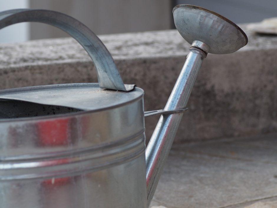 Kapinėse vandens tiekimas bus įrengtas kitąmet