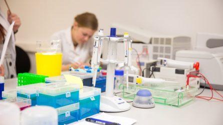 Seimas patvirtino: nuo 2020 m. rugsėjo 1 d. augs dėstytojų ir mokslininkų atlyginimai