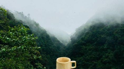 Kanapių lapų arbata – puikus pasirinkimas nuo streso