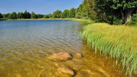 Maudyklų vandens ir smėlio kokybė atitinka higienos normos reikalavimus