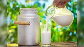 Nacionalinė parama pieno gamintojams - jau netrukus