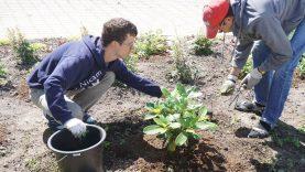 Socialinių dirbtuvių veikla – naujos galimybės neįgaliesiems
