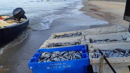 Žvejyba Baltijos jūroje, žuvų iškrovimas Klaipėdos uoste ir pakrantėje kontroliuojami visą parą