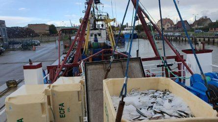 Kontrolė be sienų: Baltijos jūroje žvejojantys laivai tikrinami Lietuvoje ir Latvijoje