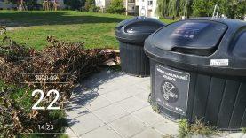 Ruduo – žaliųjų atliekų sezonas. Kaip tinkamai jas tvarkyti?