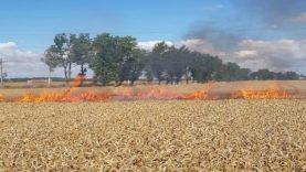 Rudeninis ugniagesių rūpestis – degančios ražienos