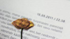 Vertimo biuras: kaip pasirinkti šios paslaugos teikėją?