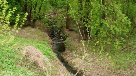 Gražiausias upės pavadinimas – Ašarėna