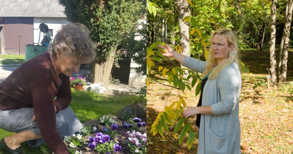 Į daržą – su išmaniuoju telefonu: padės susiplanuoti darbus ir atpažinti piktžoles