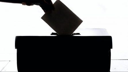 Likus 30 valandų iki rinkimų pradžios prasideda agitacijos draudimo laikotarpis