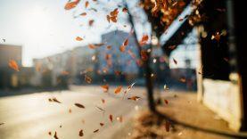 Orai: trečiadienis dovanos malonų orą, vėliau daugės pokyčių
